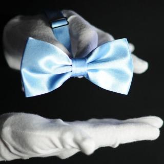 Бабочка на шею голубая