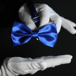 Синяя галстук-бабочка на застежке