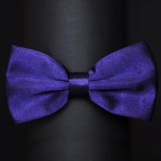 Фиолетовая мужская бабочка