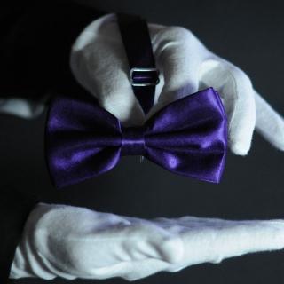 Бабочка на шею фиолетовая