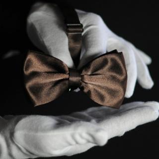 Бабочка на шею коричневая
