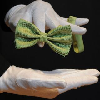 Мужская бабочка зеленого цвета