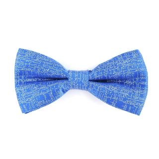 Синяя блестящая галстук бабочка