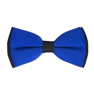 Сине-черная бабочка на застежке