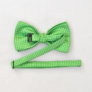 Зеленый галстук бабочка на застежке в горошек