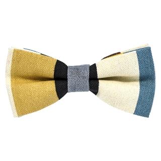 Разноцветная галстук бабочка