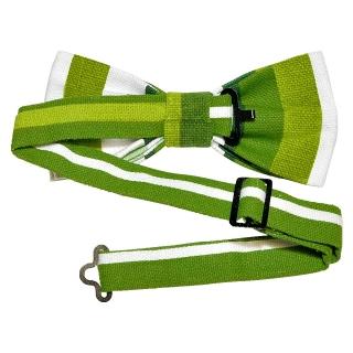 Купить бабочку с зелеными полосами