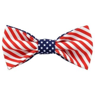 Бабочка с американским флагом