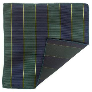 Зеленый платок в карман пиджака в полоску