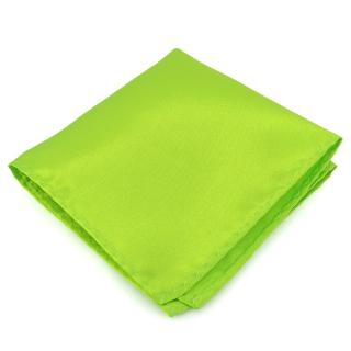 Купить зеленый нагрудный платок