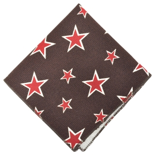 Нагрудный платок #114 (звезды)