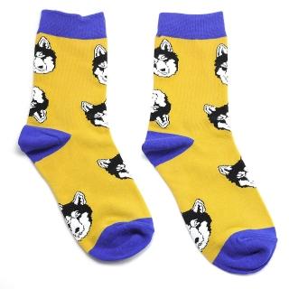 Желтые носки хаски