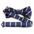 Заказать синюю галстук бабочку с полосками thumb