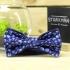 Купить черничный галстук-бабочку thumb